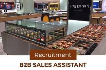 B2B Sales Assistant